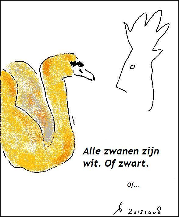 mgt-041-20121008-21-46-alle-zwanen-zijn-wit-of-zwart-oranje