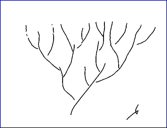 Evolutie-het-oude-beeld