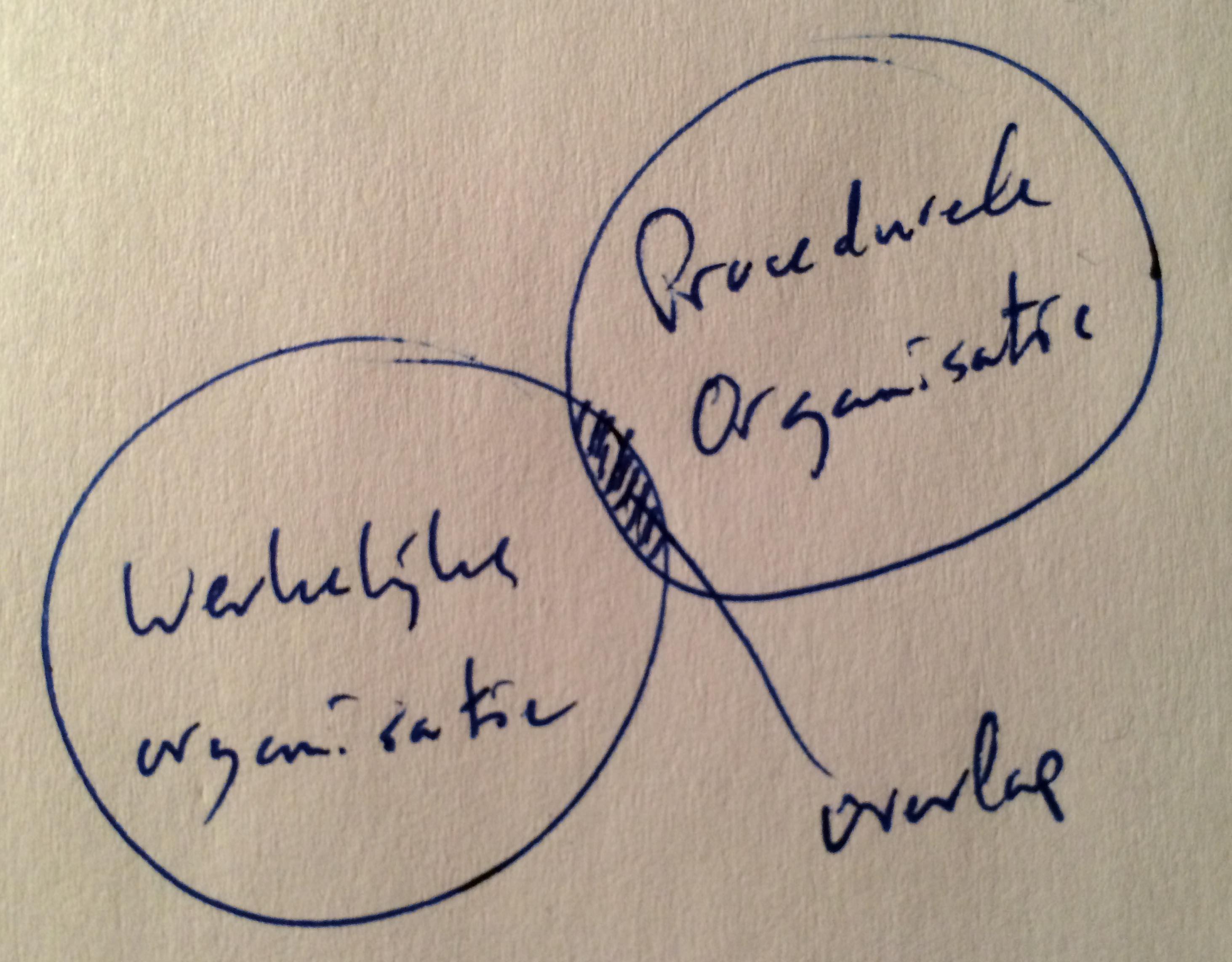 venn-diagram-schizofrene-organisatie