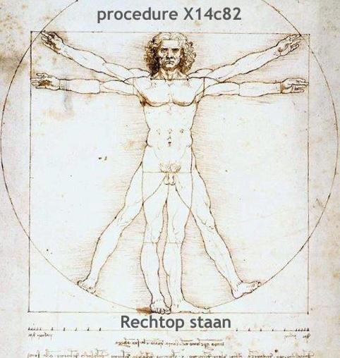 mgt-311-leonardo_da_vinci-_procedure-rechtop-staan