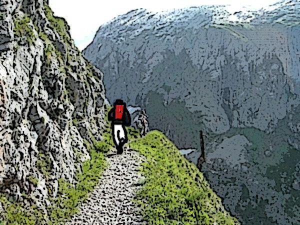 bergwandelaar